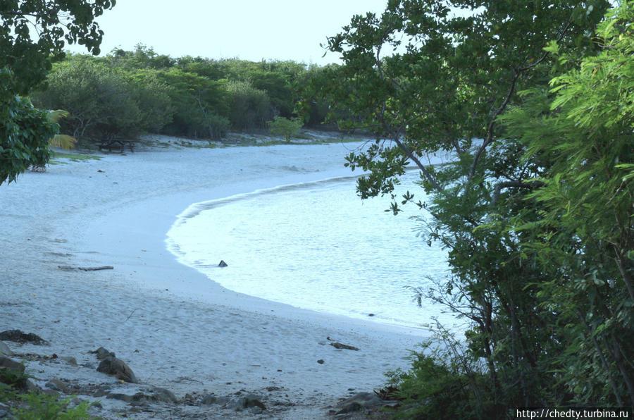 Суть острова. Дальний Восток Крус-Бей, Виргинские острова