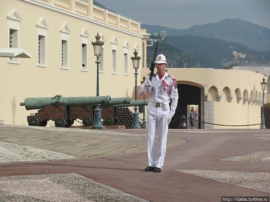 Солдат несущий службу около дворца.
