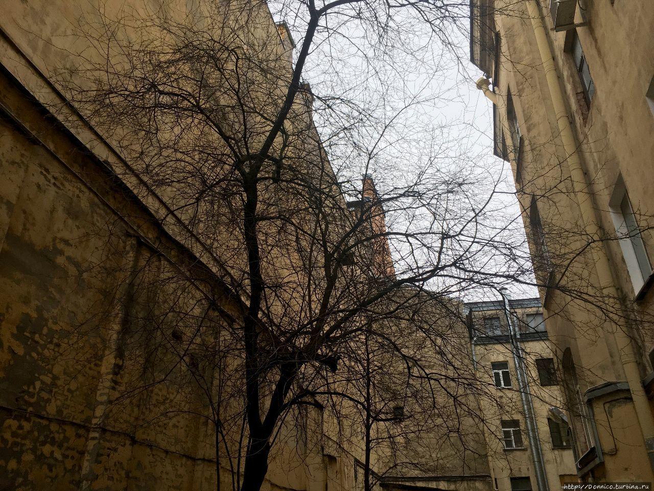 Питерский дворик на Казна