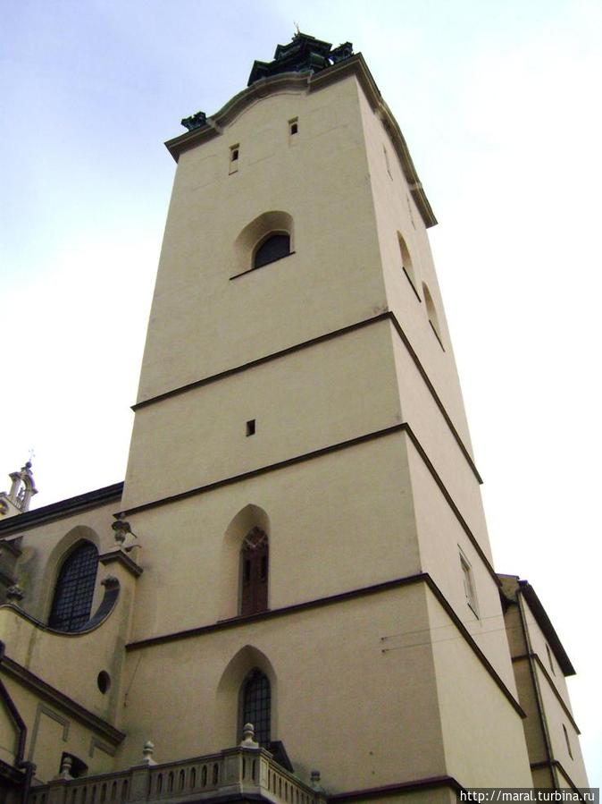 Колокольня Латинского кафедрального собора