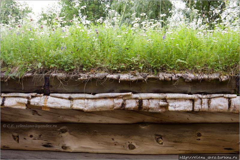 14. Сарайчик невысокий, и теперь уж я смогла как следует разглядеть устройство травяной крыши. Крыша сначала покрывается берёстой, потом на неё кладут слой дёрна, который при соответствующих условиях будет расти, цвести и, может быть, даже колоситься. Условия для травяных крыш есть не везде, для их существования должен быть определённый климат, достаточно влажный, чтобы трава не засохла. Попробуйте на своей даче покрыть крышу дома дёрном — ничего у вас не получится, трава засохнет, потому что вы не в Норвегии.