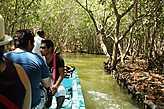 Мотор отключен, лодка заплывает в тенистые джунгли.