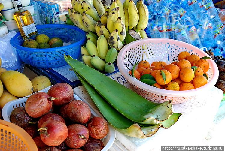 фото фрукты финик