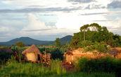 Вот они — Зеленые холмы Африки