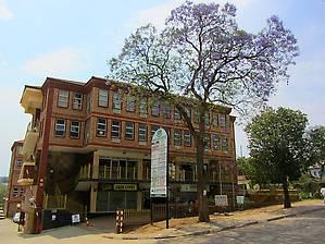 Еще один современный дом и дерево джакаранда