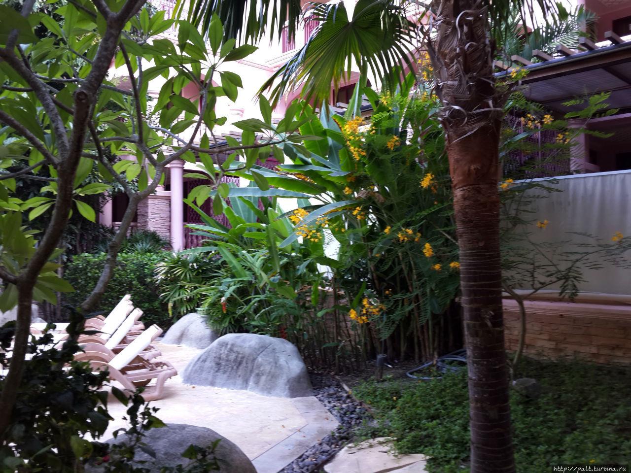 От случайных посетителей всегда можно отгородить бассейн шторкой. А вот от москитов вряд ли. В каждом номере отеля от