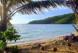 По берегам острова много кокосовых пальм