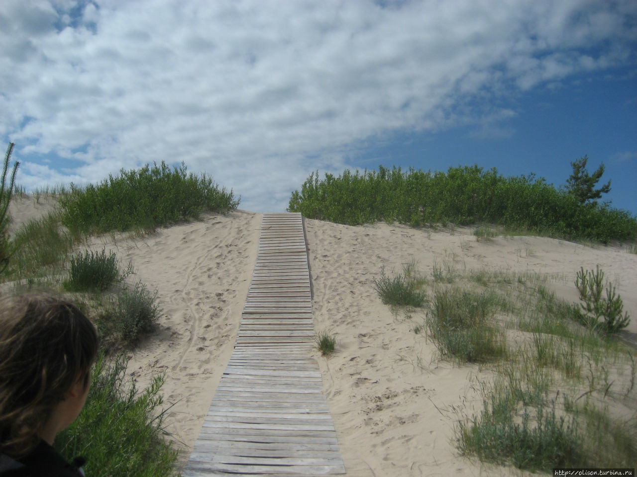 Дорожки к пляжу через дюн