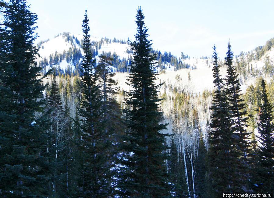 Горные лыжи в Юте. Трассы Парк-Сити, Соединенные Штаты Америки
