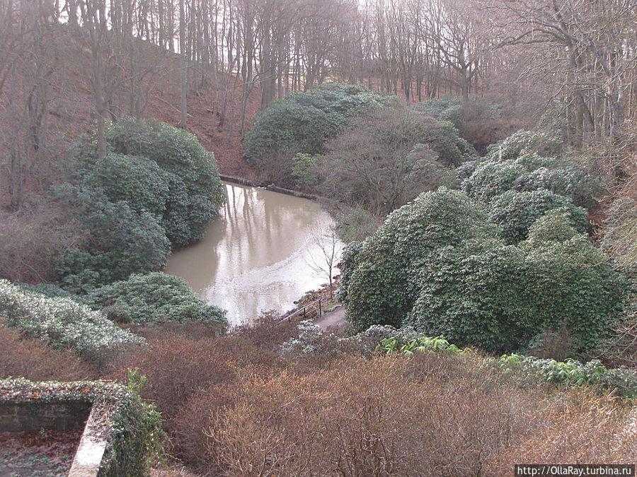 Парк рододендронов в Софиеро