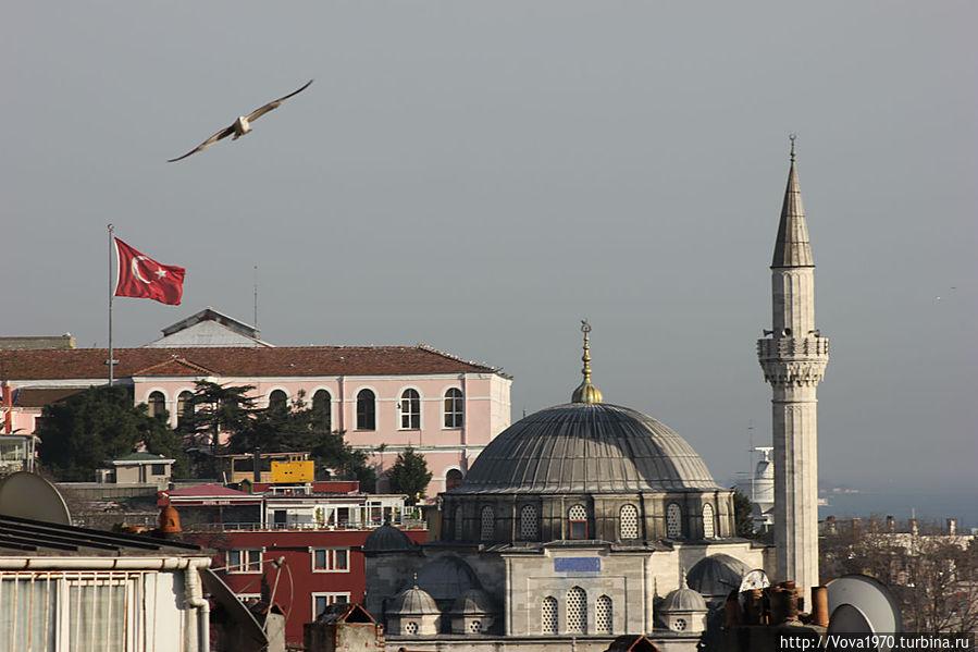 Мечеть Соколлу Мехмет Паша утром.