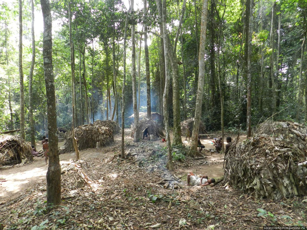 Завез бабу в лес фото 65-642