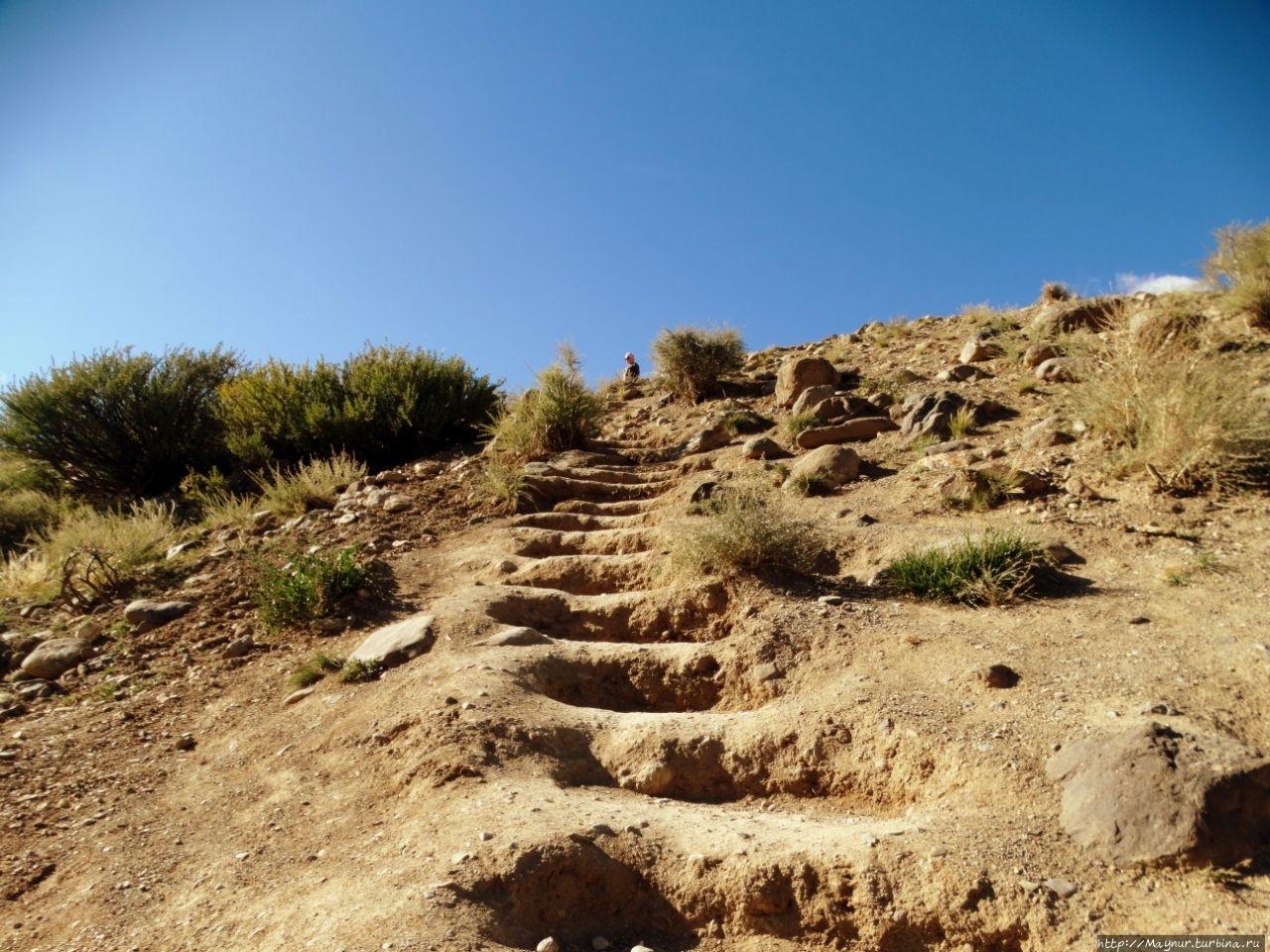 Лестница  на  Марс.