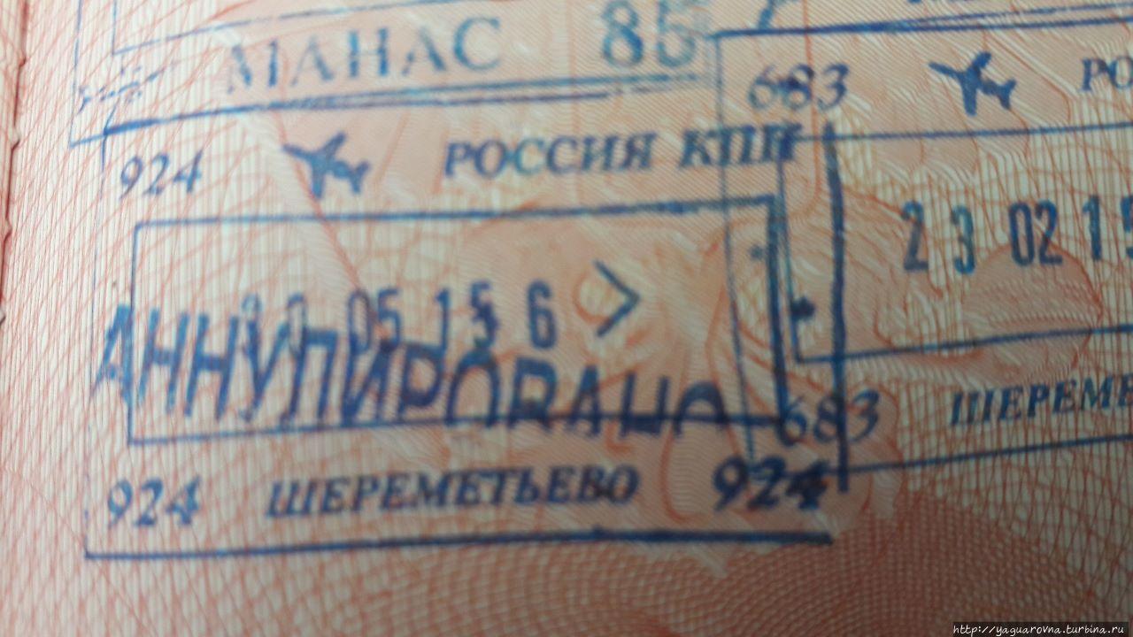 аэропорт шереметьево, терминал F Москва, Россия