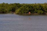 болото Сапата (Zapata)