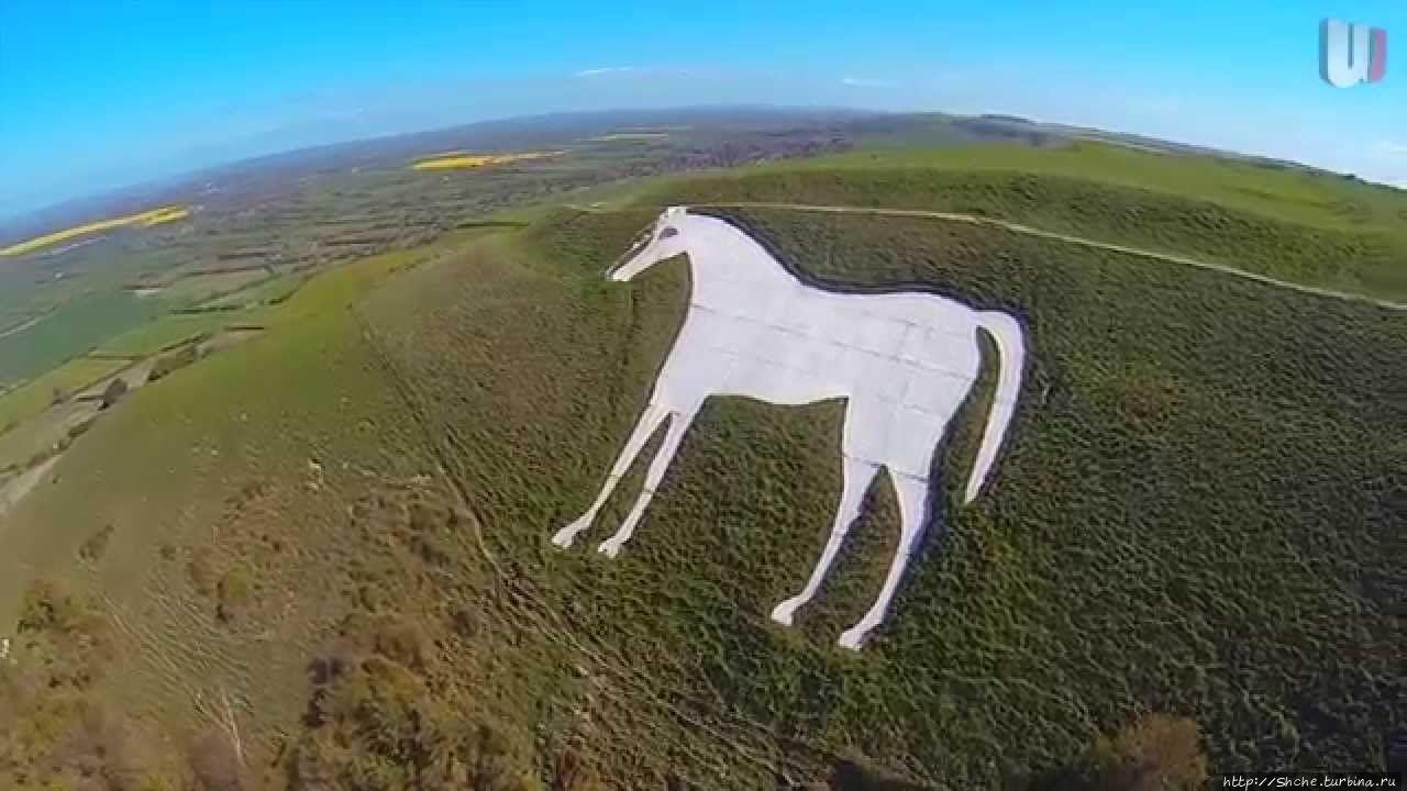 Westbury White Horse, фот