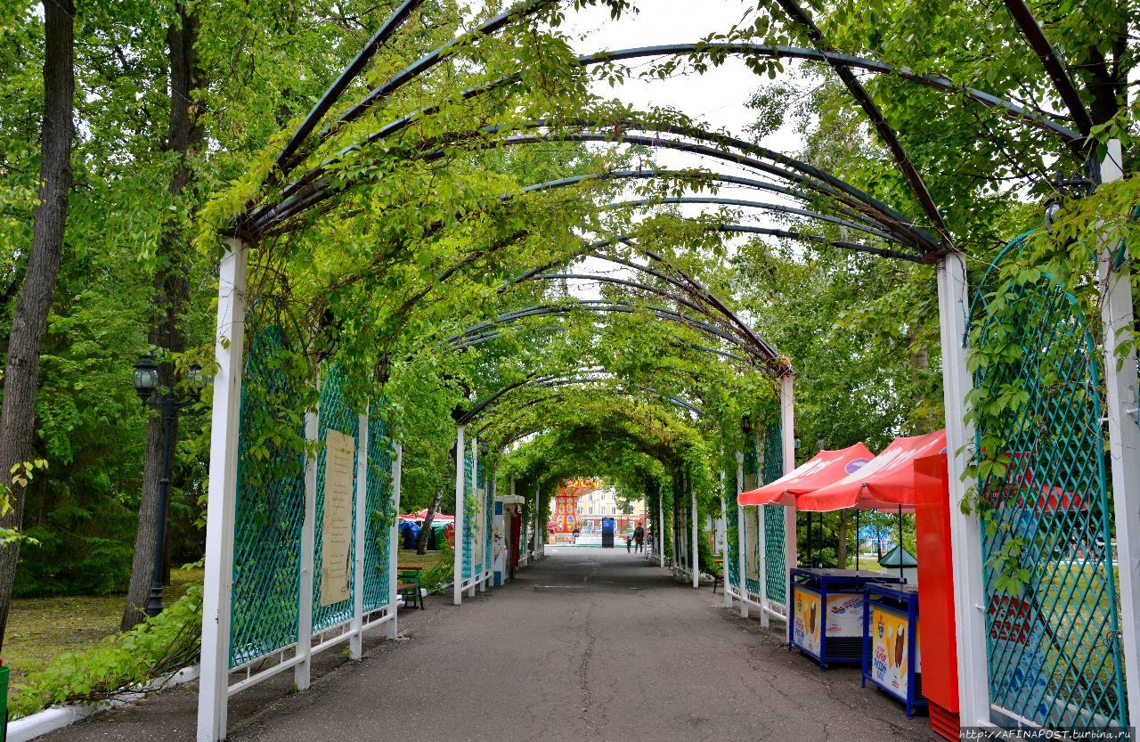 Пушкинский парк картинки