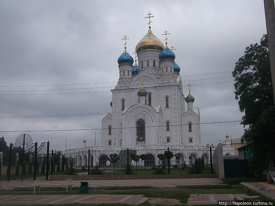 Cathedral of Our Lady of Vladimir Лиски, Россия