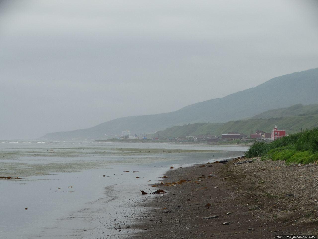 В  дымке  морской  города