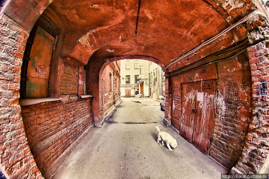 должна секретные места для фотографий в санкт петербурге что дети искололи