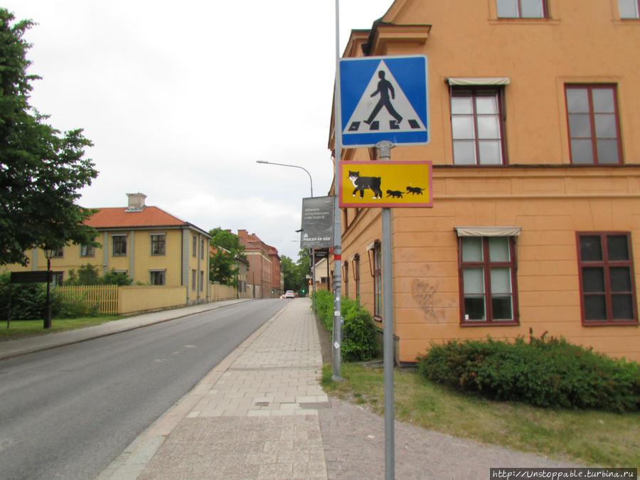 шведский образ жизни фото какого-либо датчиков сулит