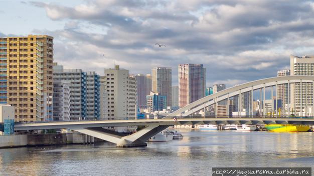 Мост Цукидзи через реку Сумида, фото из интернета. Токио, Япония