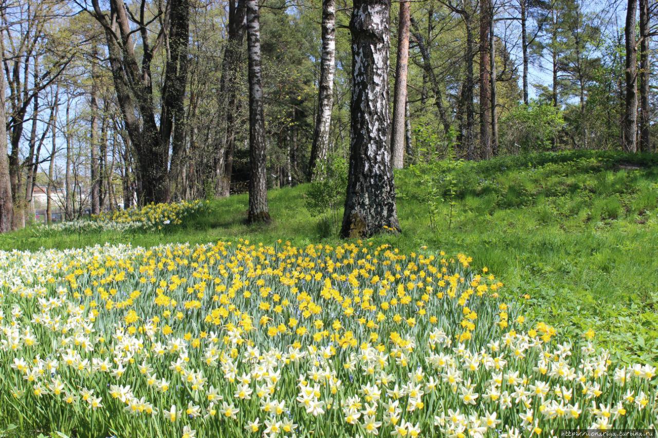 картинки майских дней природа башкортостан спрятать все