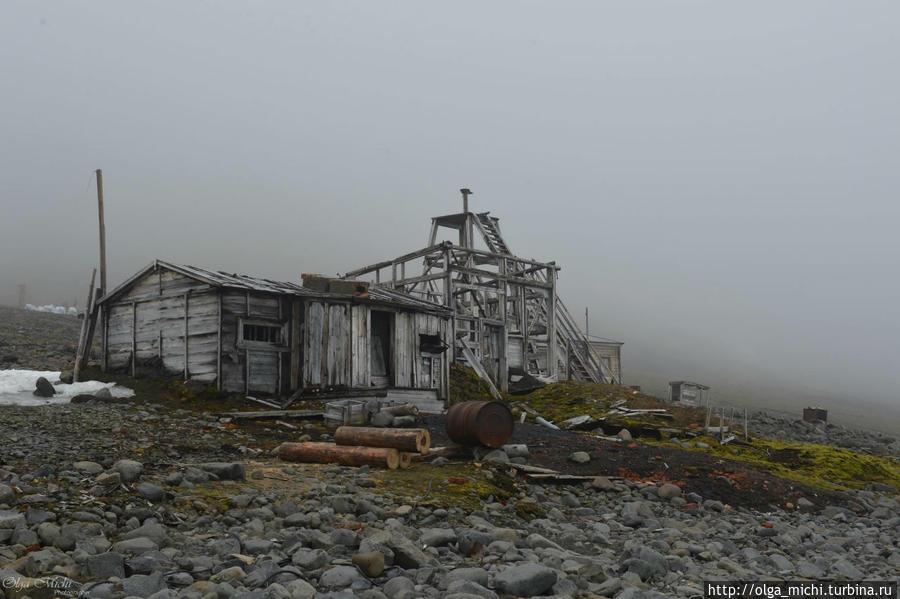 курицы входит заброшенные полярные станции фото известен своими зимними