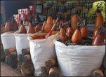 Специи и тыквы, из которых сделали емкости для их хранения