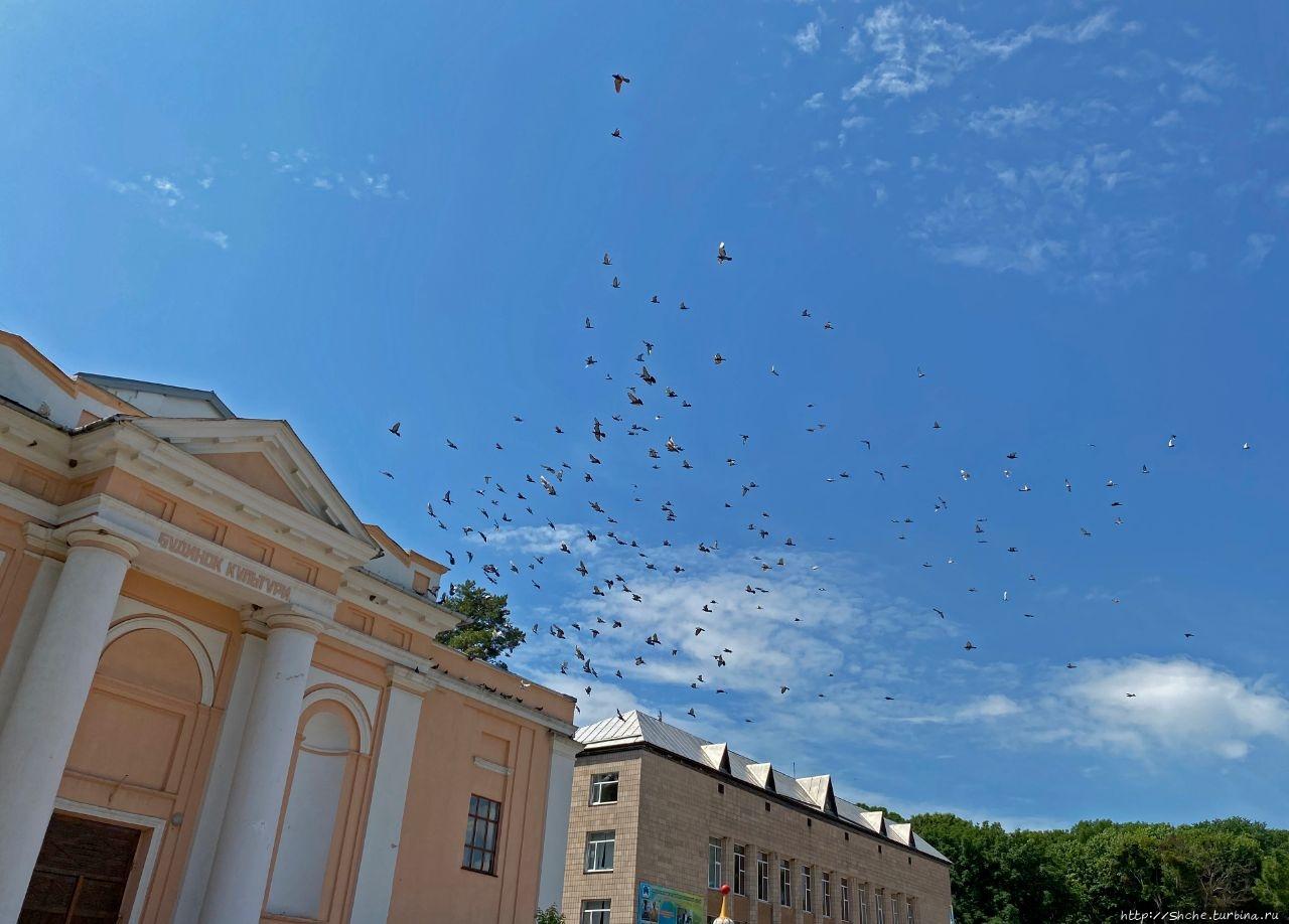 Улица Соборная Монастырище, Украина