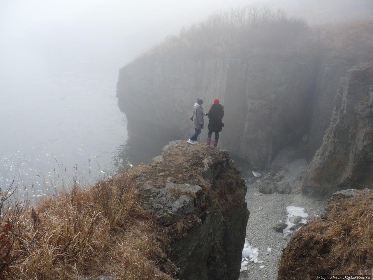 Прогулка по туманному полуострову Брюса Славянка, Россия