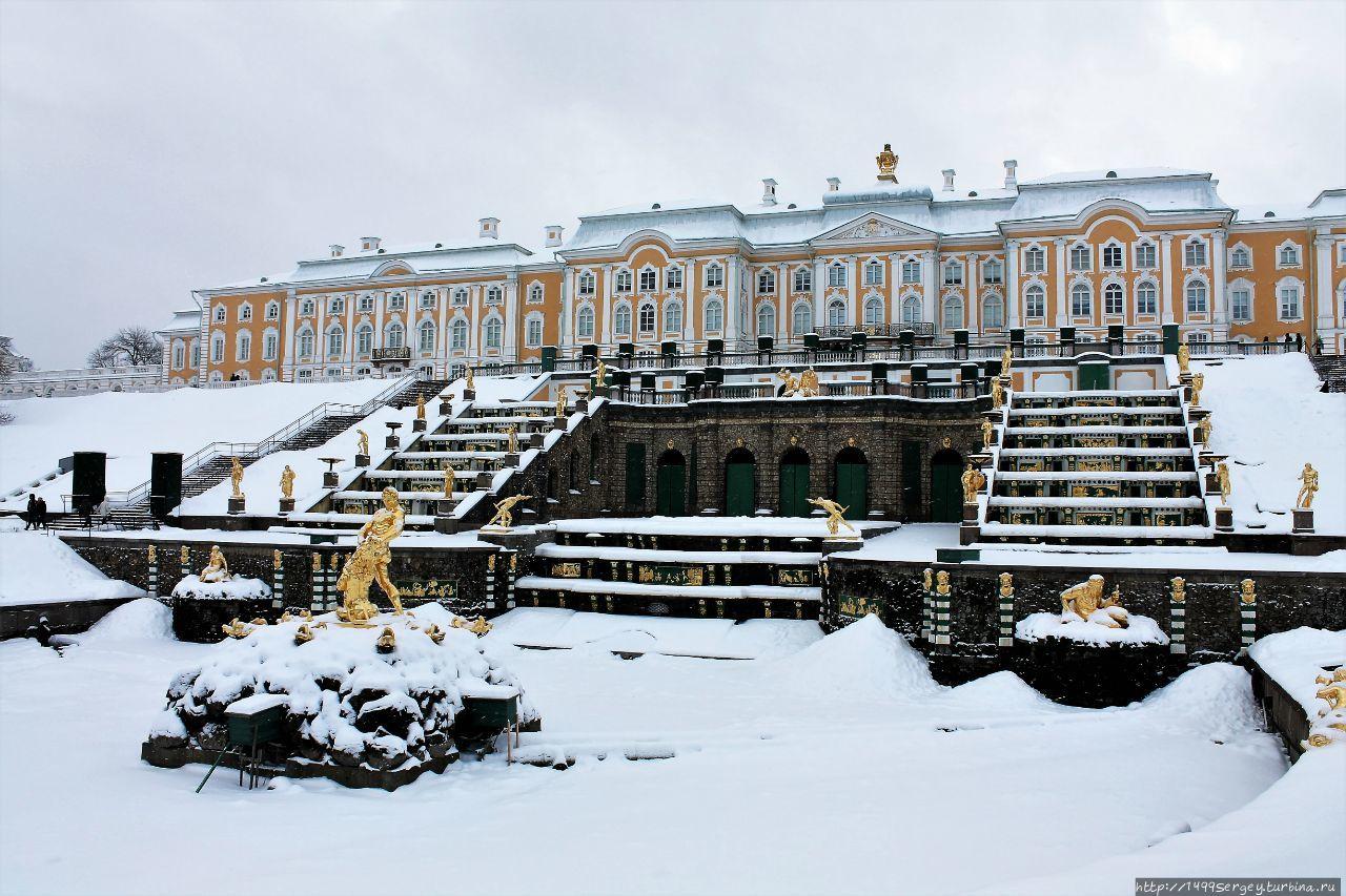 картинки петергоф зимой