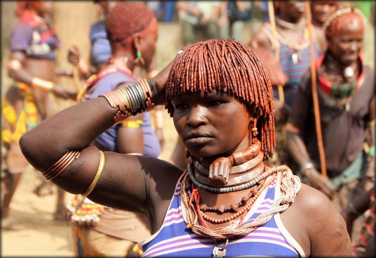 племя хамер эфиопия фото том, что