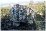 Камни покрыты лишайником и это помогло определить их возраст. Лихенометрическая методика датировки по эпилитным лишайникам, неоднократно проводимая на мегалитических комплексах Скандинавии и Кольского полуострова, дает минимальный возраст Камней Сейда около 8-10 тыс. лет.