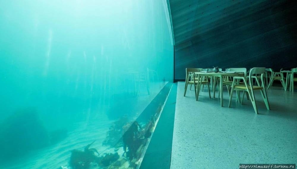 Подводный ресторан «Under
