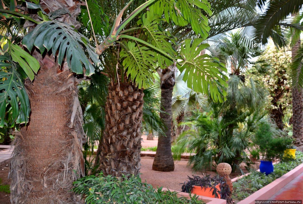 Сад Мажорель Марракеш, Марокко