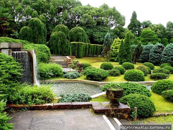 Затонувший сад. Из нтерне