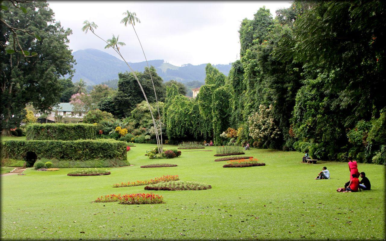 хорошо шри ланка фото ботанического сада поиск, поставщики