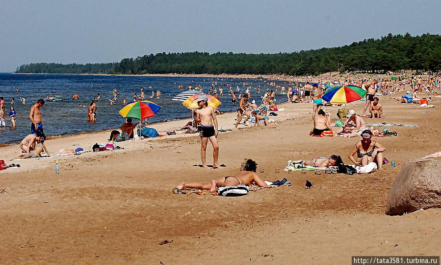 каждый нас пляж липово фото период вспышек