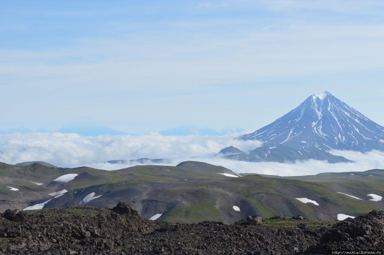Вдали — вулкан Вилючински