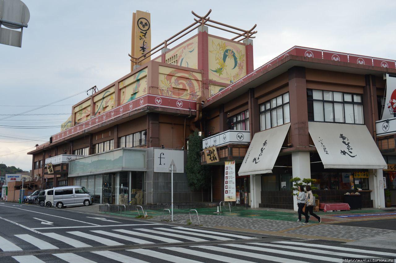 Город Хацукаити