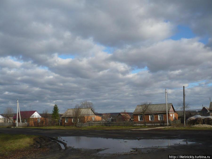 Зимние птицы ленинградской области фото и названия можно