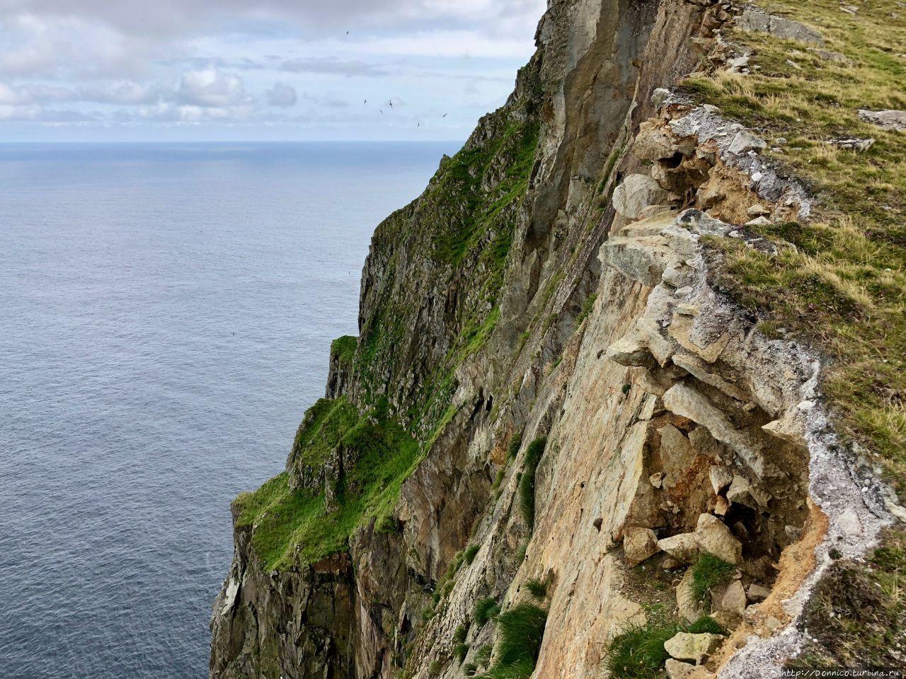 Последняя тайна Европы: Сент-Килда под тенью Пингвинуса Остров Хирта, архипелаг Сент-Килда, Великобритания