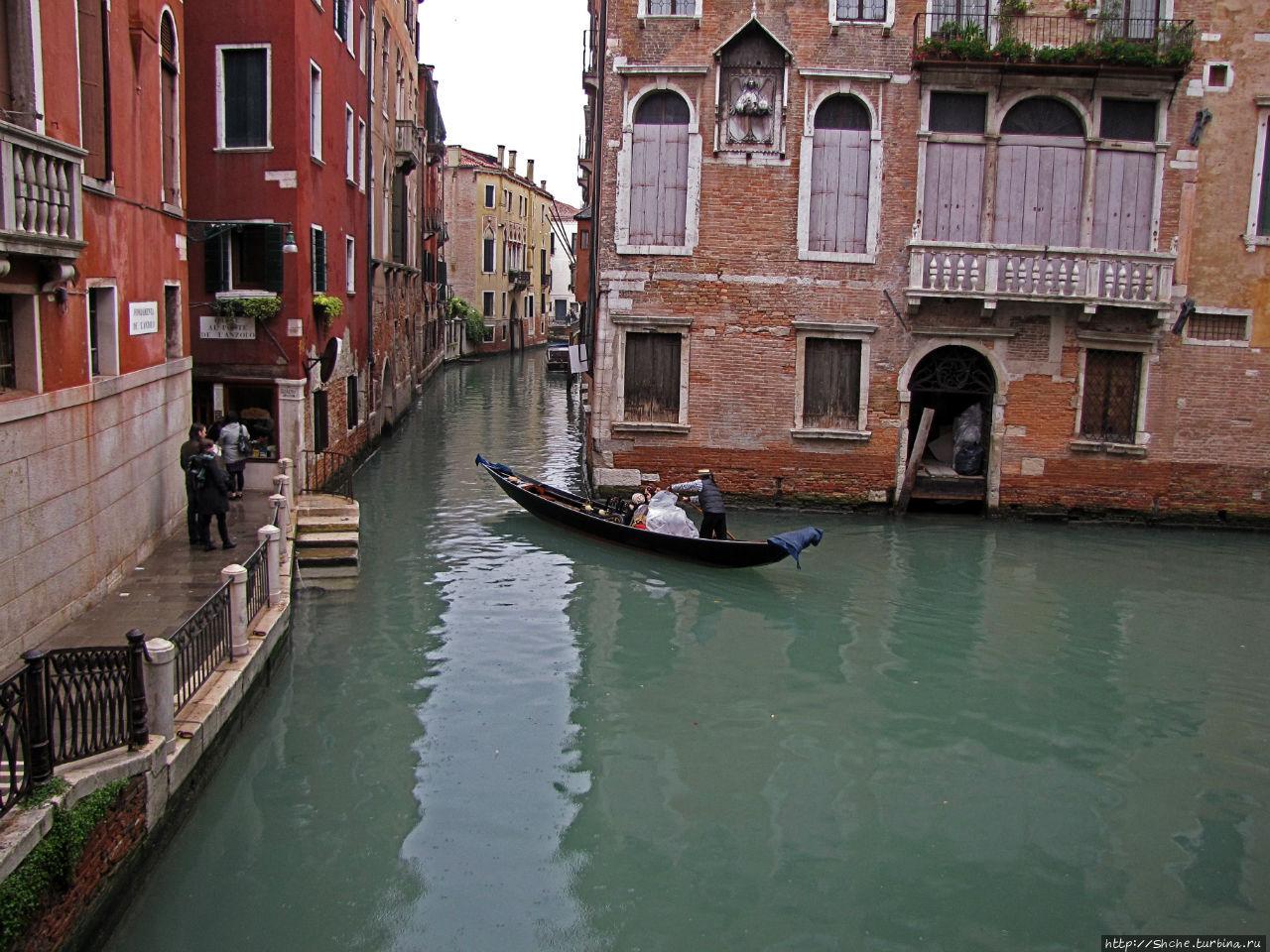 спасатели люки венеции фото инструменты для шитья