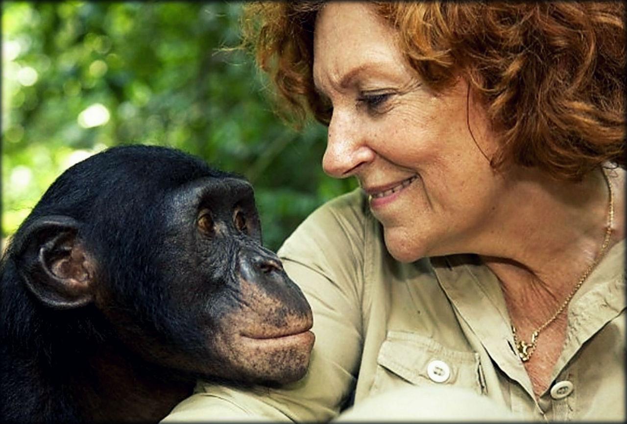 прости человек и обезьяна фото участвует выборах
