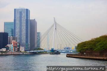 Белый мост через реку Сум