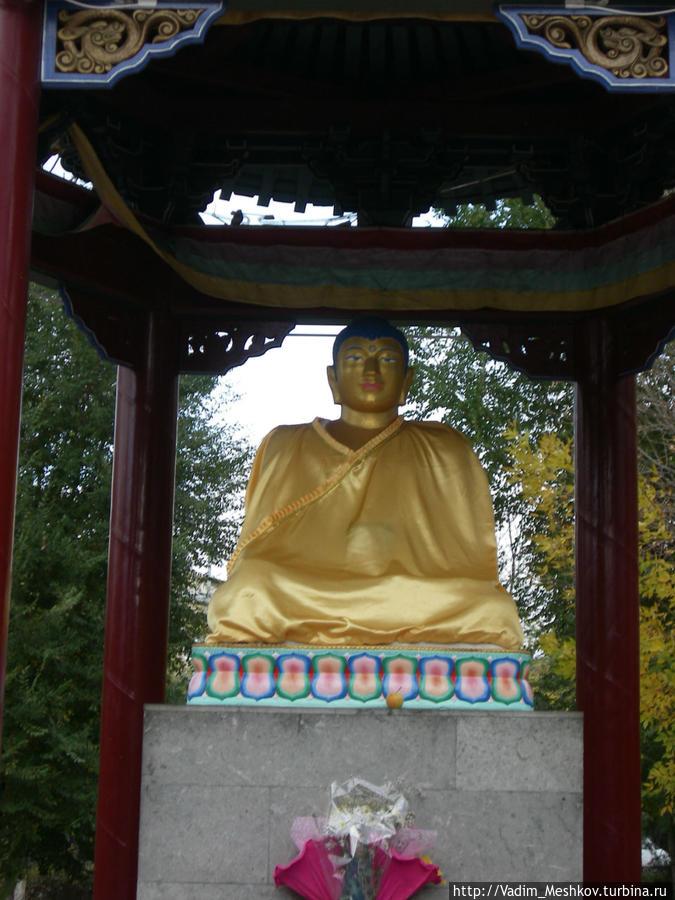 нашли фото памятник будды элиста урожай, сломанные