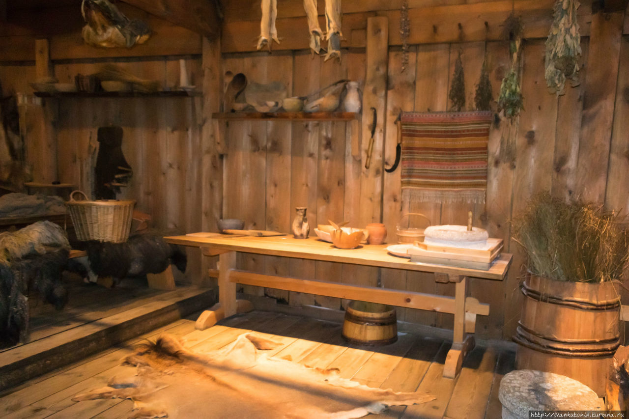 тут музей викингов лофотр фото вид подсолнуха был