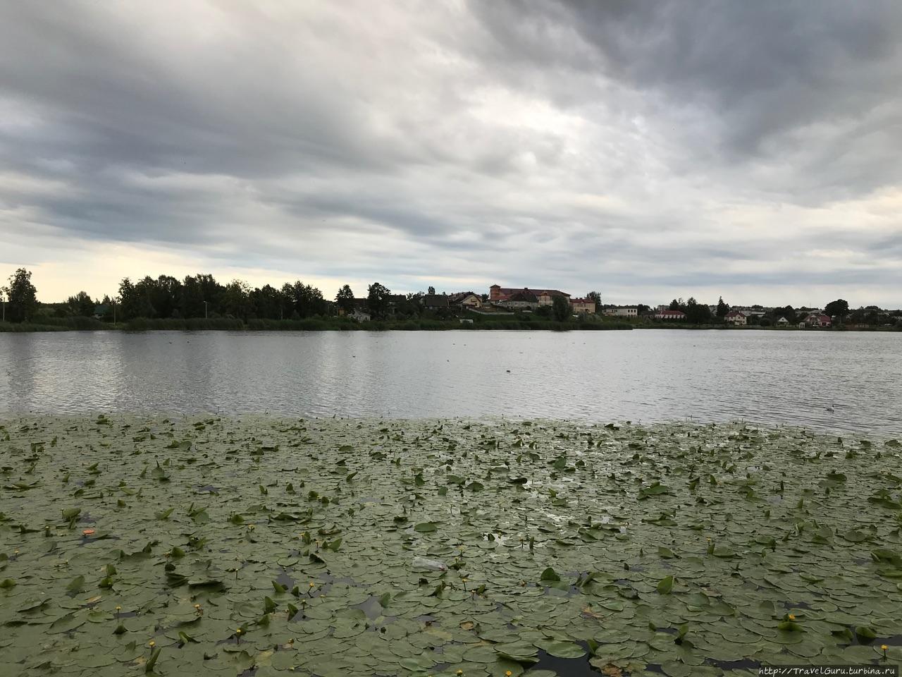 Озеро Кагальское близь це