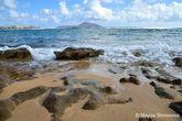Slaughter Bay. Здесь вы можете наблюдать богатство морской жизни во время отлива и снорклить.